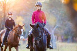 balada-equestre-chalet-montrejeau